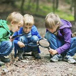 Lesson plan: Outdoor learning with 'tree-rific' poems