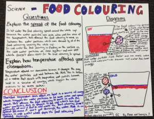 Food colouring report